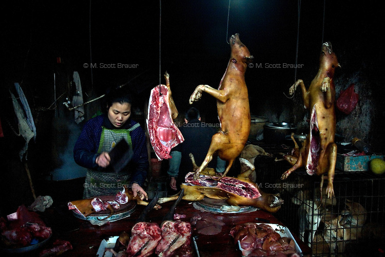 A woman butchers dogs at the central downtown market in Yangshuo, Guangxi Province, China.
