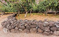 Ancient Hawaiian stone wall in  Nualolo Kai village, Na Pali coast, Kauai
