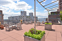 Roof Deck at 36 Sutton Place South