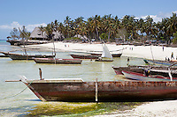 Kizimkazi Dimbani, Zanzibar Beach Scene, Fishing Boats.