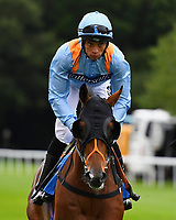 Move Over ridden by Sean Leavey goes down to the start of The M J Church British EBF Novice Stakes (Plus 10) (Div 1),S during Afternoon Racing at Salisbury Racecourse on 7th August 2017
