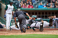 Fort Wayne TinCaps Xavier Edwards (9) is tagged out by catcher Jose Herrera (8) as home plate umpire Thomas Burrell and Dwanya Williams-Sutton (11) watch during a Midwest League game against the Kane County Cougars at Parkview Field on May 1, 2019 in Fort Wayne, Indiana. Fort Wayne defeated Kane County 10-4. (Zachary Lucy/Four Seam Images)