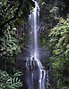 Wailua Falls on the Hawaiian island of Maui. Photo by Kevin J. Miyazaki/Redux