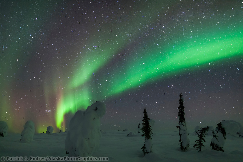 The Northern lights arc over the snow covered tundra in Interior, Alaska.