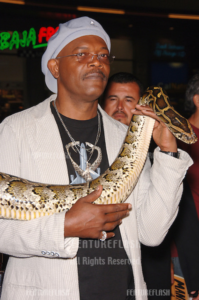"Actor SAMUEL L JACKSON at the Los Angeles premiere of his new movie ""Snakes on a Plane"" at the Chinese Theatre, Hollywood..August 17, 2006  Los Angeles, CA.© 2006 Paul Smith / Featureflash"