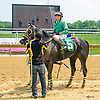 Ride The Shark winning at Delaware Park on 7/25/16