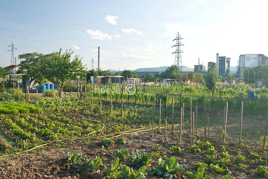 France, vallée du Rhône, Jardins ouvriers de l'usine Rhône-Poulenc //France,  Allotments near plant Rhone-Poulenc