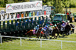 August 10, 2019 : The field exits the starting gate at the start of an undercard race during Arlington Million Day at Arlington International Racecourse in Arlington Heights, Illinois. Jon Durr/Eclipse Sportswire/CSM