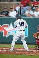 Robert Javier (18) of the Pulaski Yankees at bat against the Greeneville Reds at Calfee Park on June 23, 2018 in Pulaski, Virginia. The Reds defeated the Yankees 6-5.  (Brian Westerholt/Four Seam Images)