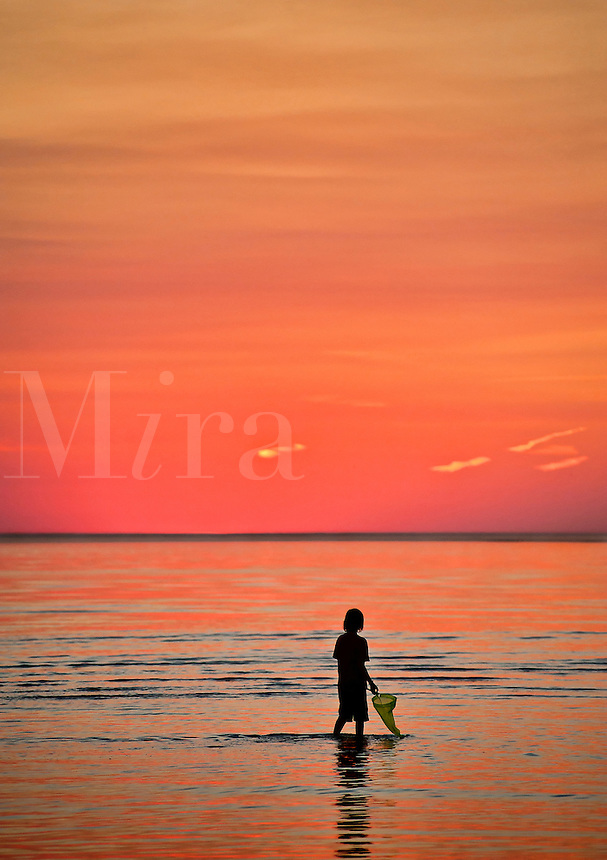 Boy explores the shallow waters with a fishing net. Cape Cod, MA, Massachusetts