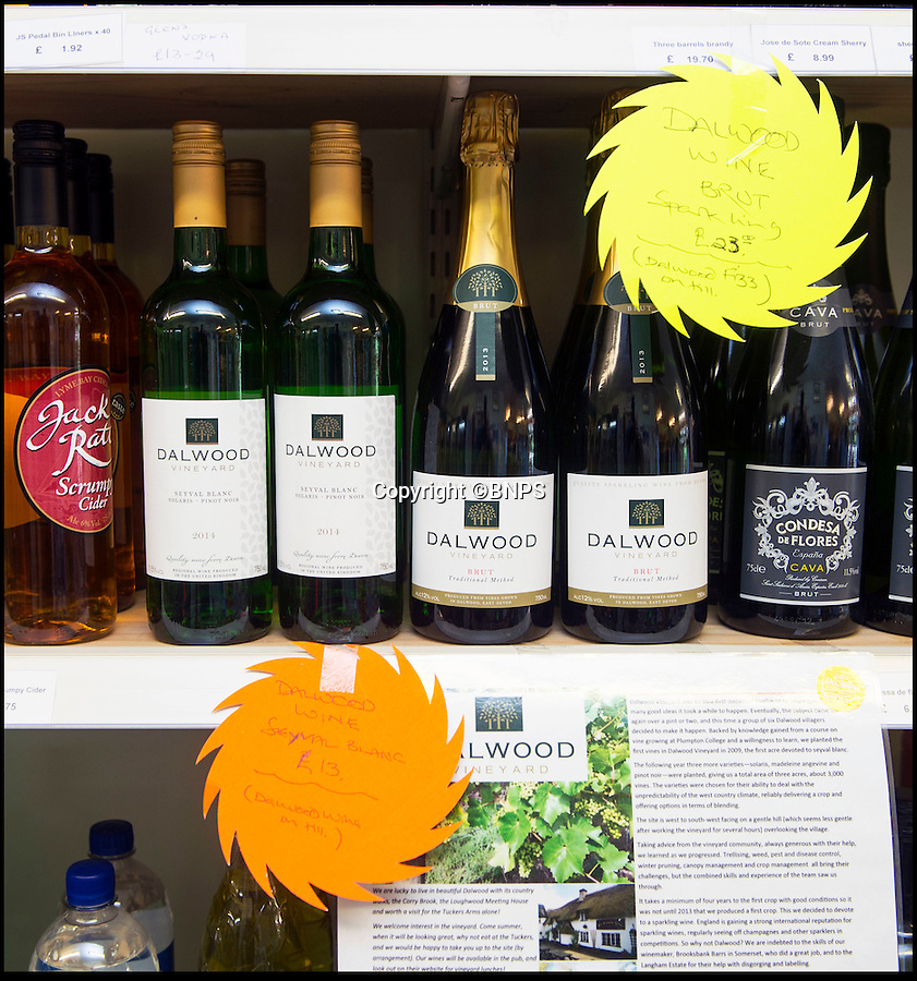 Bmth News (01202 558833)<br /> Pic: PhilYeomans/BNPS<br /> <br /> The local shop and the village pub are your best chance of getting hold of the award winning tipple - but only a few bottles are left from their first effort....<br /> <br /> A village pub skittle team who formed a wine-growing syndicate have bowled industry experts over with their award-winning version of Champagne.<br /> <br /> But wine lovers may struggle to lay their hands on a bottle of the tasty first vintage, as the two acre site barely produces enough vino to keep the thirsty locals happy...and you certainly won't find it in a main stream supermarket.<br /> <br /> The idea to plant their own grapevines came to the four drinkers in 2007 as a result of a conversation in their local pub in Shaldon, Devon.<br /> <br /> But wine lovers may struggle to lay their hands on a bottle of the tasty first vintage, as the two acre site barely produces enough vino to keep the thirsty locals happy...and you certainly won't find it in a main stream supermarket.<br /> <br /> In 2013 the group, called Dalwood Vineyard, took their first harvest and in 2015 they celebrated its first bottle of sparkling wine which has now won a bronze medal in the prestigious Decanter World Wine Awards.