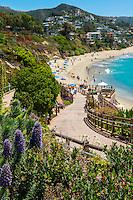 Laguna Beach; Ca; Montage Resort, Treasure Island Beach; seaside; resort;