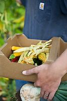 Fresh harvest farm heirloom vegetables, Viridian Farms