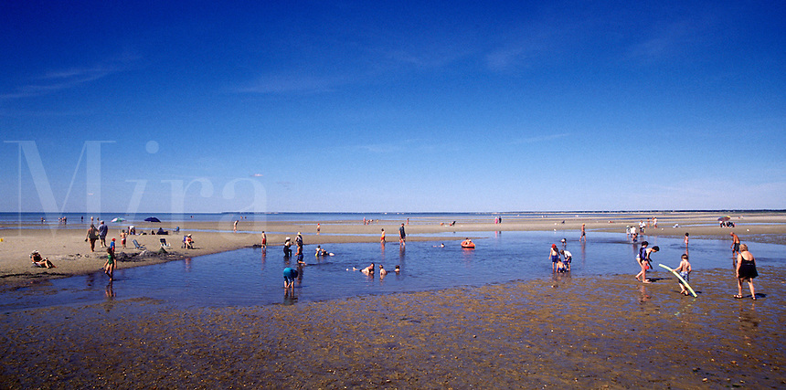 Paines Creek Beach, Brewster, Cape Cod, MA