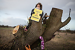 """© Joel Goodman - 07973 332324 . 26/01/2014 . Salford , UK . A girl holds a """" There is no safe fracking """" sign on a chopped tree adjacent to the protest camp . Protesters march to an iGas fracking exploration site at Barton Moss , Salford , today (Sunday 26th January 2014) . A long term protest camp has been established on an access road leading to the site and today (26th January) protesters from other areas of the country travelled to the site to join with other protesters against fracking . Photo credit : Joel Goodman"""