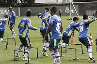 SÃO PAULO, SP, 11 JANEIRO DE 2013  - TREINO PALMEIRAS - Os jogadores dopalmeiras durante treinamento na Academia de Futebol, na manha dessa sexta-feira, 11, Barra Funda, zona oete  da capital -   FOTO LOLA OLIVEIRA - BRAZIL PHOTO PRESS