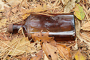 Glass bottle thrown in the forest of Pawtuckaway State Park in Nottingham, New Hampshire USA.