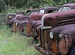 Rusted trucks along the roadside on US 319 in Wakulla County south of Crawfordville, Florida September 21, 2008.  (Mark Wallheiser/TallahasseeStock.com)
