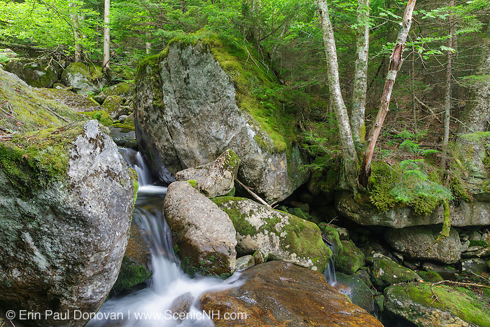 The top portion of Cascade #5 on Cold Brook in Randolph, New Hampshire during the summer months. The 1908 map of the Northern Peaks of the White Mountains by Louis F. Cutter shows 11 cascades along this brook. This is cascade number 5.