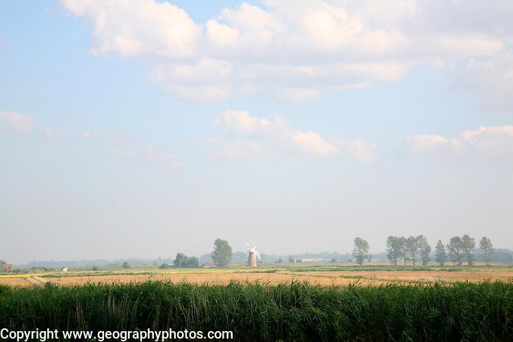 Broadland landscape flat land big sky and windmill near Reedham, Norfolk, England