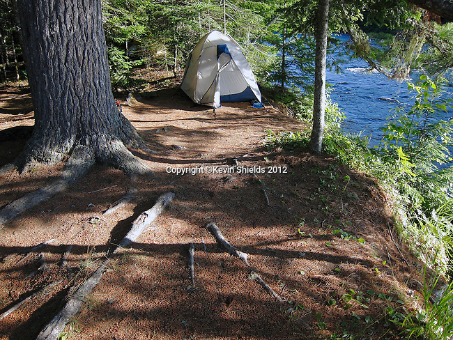 Tent at a campsite along the St. Croix River, Maine, USA