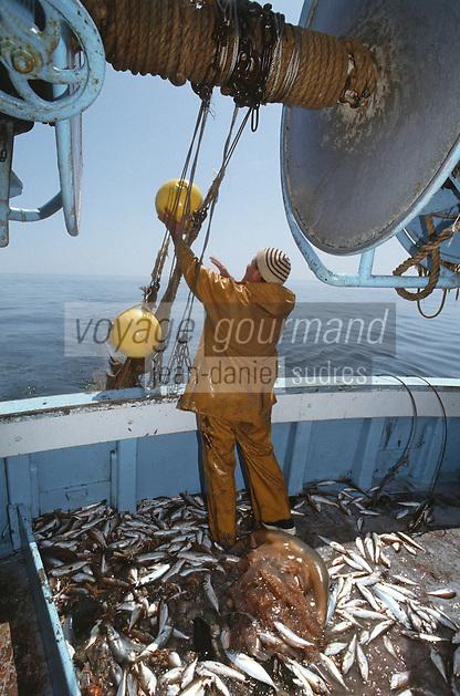 France/17/Charente Maritime/La Rochelle: Pêche au chalut avec Mr. Etien patron pêcheur