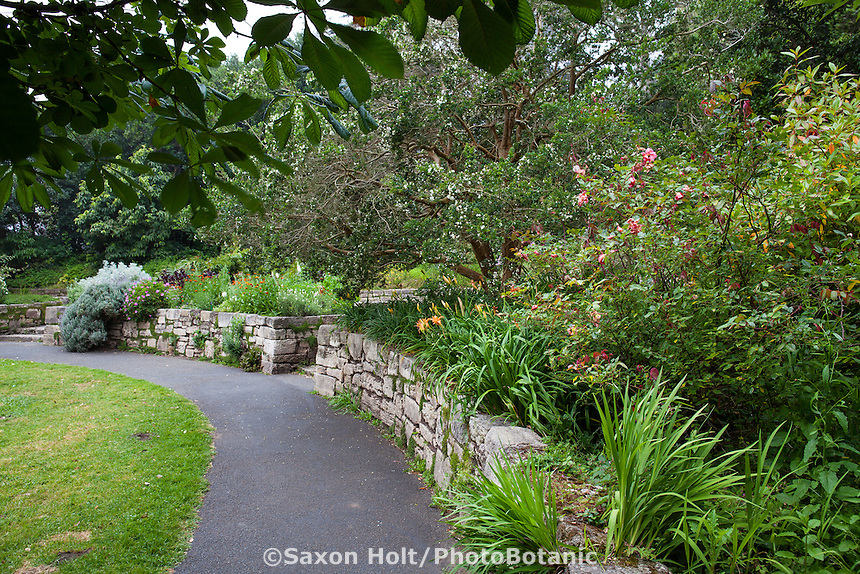 The Garden of Fragrance with rock wall in San Francisco Botanical Garden