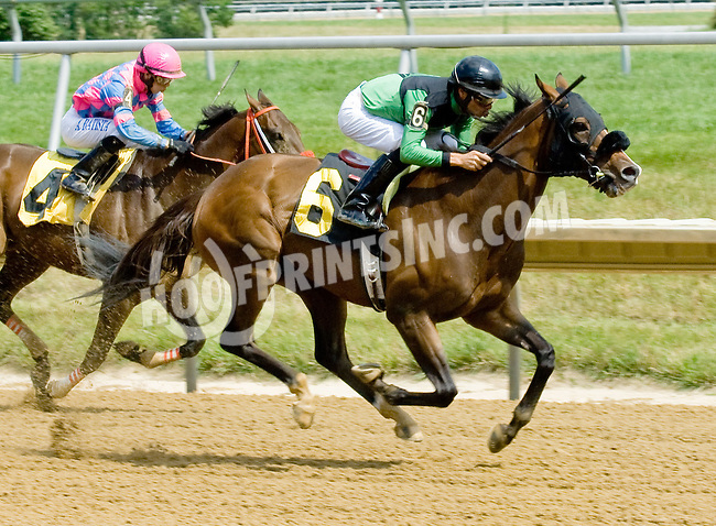 Bunker Hill winning at Delaware Park on 7/9/12