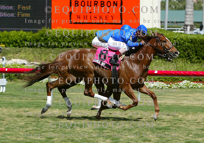 Ashkal Way #8 with Jose Velez, Jr. won the Lure Stakes at Gulfstream Park in Hallandale Beach, Florida over #7 Classic Campaign and Edgar Prado on Sunday April 1, 2007. Photo By Jessica Denver/EQUI-PHOTO
