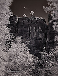 Autumn Leaves, West Fork (Infrared)