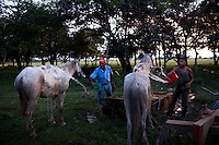 Dec. 14, 2011 - Yopal, Colombia. llaneros (cowboys) wash their horses after a days work. © Nicolas Axelrod / Ruom