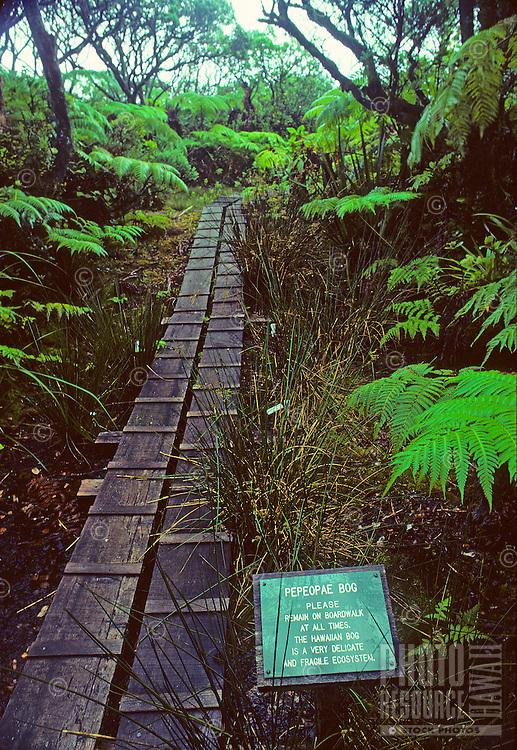 Kamakou Nature Conservancy Preserve, Pepeopae Bog sign on board walk