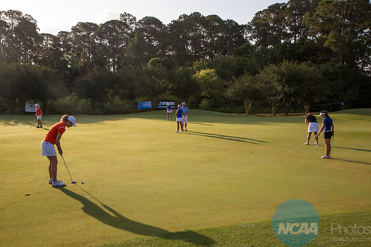 15 May 2015: Golfers practice putting before the Division III Women's Golf Championship at the Mission Inn Resort in Howey-in-the-Hills, FL. Williams College won the team championship with a score of +111 and McKenzie Ralston of Mary Hardin-Baylor took individual honors with a score of +13. Matt Marriott / NCAA Photos
