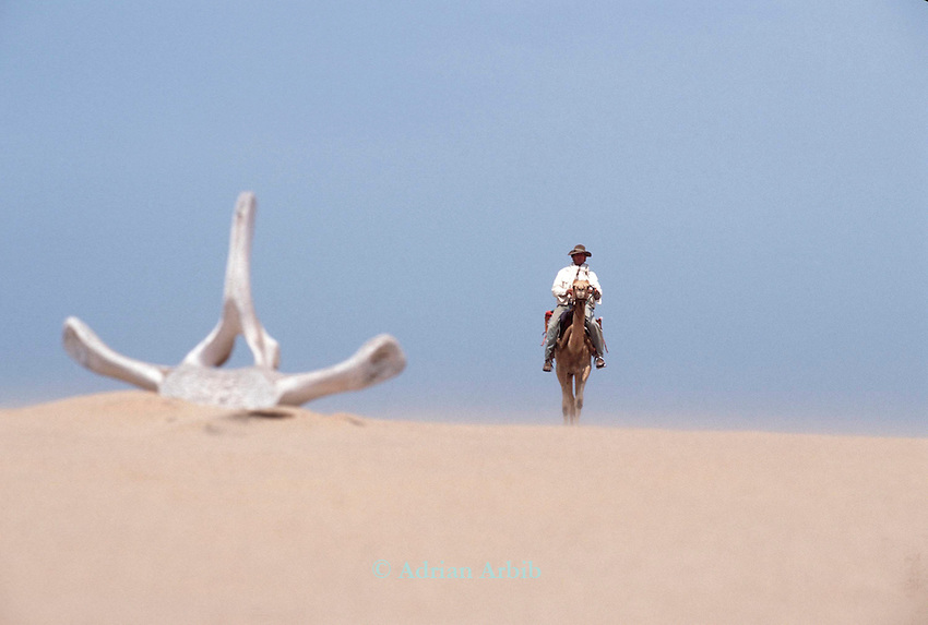 Explorer  Benedict Allen passing by a whale bone as  he travels along the Skeleton coast on his journey from South Africa to Angola.
