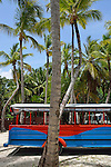 Multi-Colored truck and coconuts trees, Punta Cana, Dominican Republic