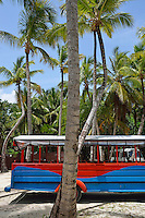 Multi-Colored truck and coconuts trees, Punta Cana, Dominican Republic