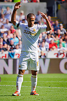 Saturday 22 September 2012 <br /> Pictured: Wayne Routledge<br /> Barclays Premiership, Swansea City v Everton at the Liberty Stadium, south Wales.