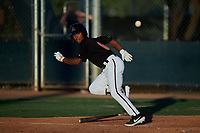 AZL D-backs Glenallen Hill Jr. (6) bunts during an Arizona League game against the AZL Mariners on July 3, 2019 at Salt River Fields at Talking Stick in Scottsdale, Arizona. The AZL D-backs defeated the AZL Mariners 3-1. (Zachary Lucy/Four Seam Images)