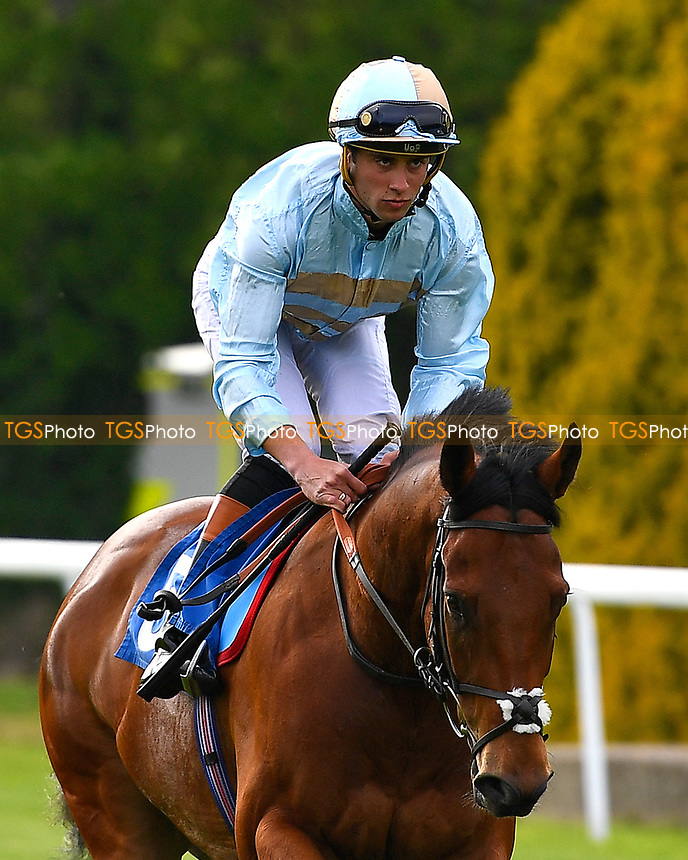 Swanton Blue ridden by Thomas Brown go down to the start of the second race during Evening Racing & Spire FM Does The 80s at Salisbury Racecourse on 27th May 2017