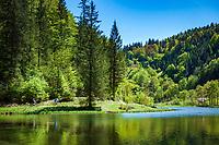 Oesterreich, Tirol, bei St. Ulrich am Pillersee: der Wiesensee (Tirol) ist ein kleiner Gebirgssee am Fusse der Loferer Steinberge zwischen dem Pillersee und Hochfilzen gelegen | Austria, Tyrol, near bei St. Ulrich am Pillersee: lake Wiesensee (Tyrol) at the foot of Loferer Steinberge mountains between St. Ulrich am Pillersee and Hochfilzen