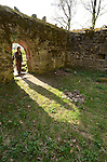 Mediaeval castle ruins at Der Glauberg Celtic site in Hessen, Germany.