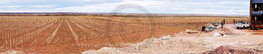 Wide panorama view of the vineyard and the new winery right Bodega Valle Perdido (previously Arquen) Winery, Neuquen, Patagonia, Argentina, South America