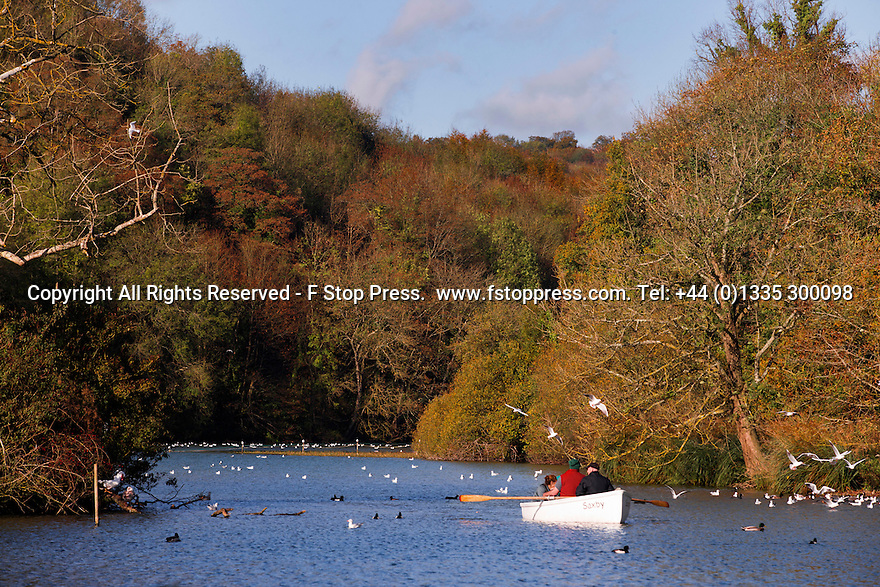 27/10/14<br /> <br /> As half-term temperatures soar, a family enjoy the morning messing-around in a rowing boat surrounded by stunning autumn colours on Swanbourne Lake in Arundel, West Sussex.<br /> <br /> All Rights Reserved - F Stop Press.  www.fstoppress.com. Tel: +44 (0)1335 300098