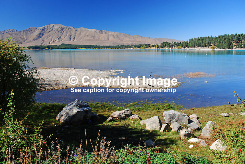 Lake Tekapo, South Island, New Zealand, 201004085184..Copyright Image from Victor Patterson, 54 Dorchester Park, Belfast, United Kingdom, UK. Tel: +44 28 90661296. Email: victorpatterson@me.com; Back-up: victorpatterson@gmail.com..For my Terms and Conditions of Use go to www.victorpatterson.com and click on the appropriate tab.