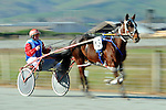 2014 Nelson Harness Races Winter Cup Festival. Richmond Racetrack, Richmond, Nelson, New Zealand. Friday 6 June 2014. Photo: Chris Symes/www.shuttersport.co.nz