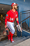 28 February 2017: Washington Nationals outfielder Bryce Harper steps up from the tunnel and into the dugout prior to the inaugural Spring Training game between the Washington Nationals and the Houston Astros at the Ballpark of the Palm Beaches in West Palm Beach, Florida. The Nationals defeated the Astros 4-3 in Grapefruit League play. Mandatory Credit: Ed Wolfstein Photo *** RAW (NEF) Image File Available ***