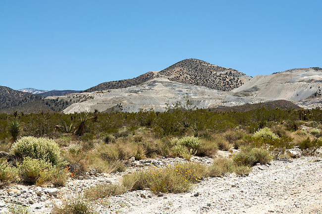 Terrace Springs Mine showing remains of hillside mining activity