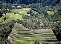 aerial photograph mountain vineyard Napa Valley, California