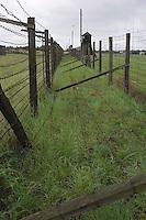 Europe/Pologne/Lublin: /Majdanek: le camp d'extermination