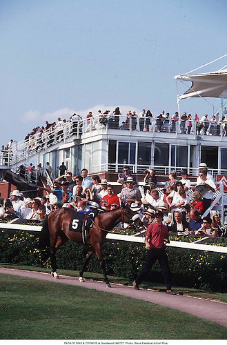 PARADE RING & CROWDS at Goodwood, 940727. Photo: Steve Bardens/ Action Plus....1994.horse racing.equestrian sport